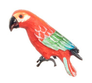 Poly Macaw Parrot