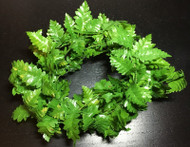 2ft Large Leaf Fern Roping
