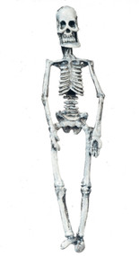 Miniature Skeleton 60mm Length