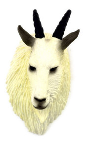 Mountain Goat Trophy Head
