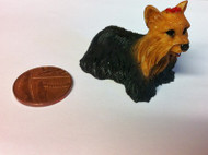 Dog 2 Yorkshire Terrier