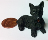 Dog 7 Scottie