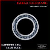 6004 Ceramic Ball Bearing