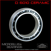 D6010 Ceramic Ball Bearing