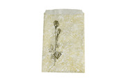 Gift Bags-5X7 Gold     1000/Bx, Item No. 61.178
