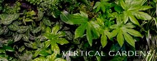 verticalgardensbutton1.jpg