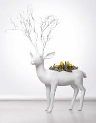 Deer Life Size - Special Order