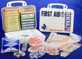 First Aid Kt - 16PW - ANSI General Purpose, 16 Unit