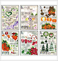 1 Stroke workbook pack-Celebrations