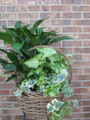 Fresh Porch Garden Basket