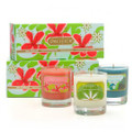 Pacifica Gift Set-3 Soy Candles