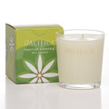 Tahitian Gardenia Soy Candle 5.5 oz
