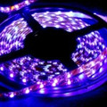 "LED STRIP LIGHTING TAPE  Reel 5/16"" x 16' (5m) waterproof  flexable BLUE"