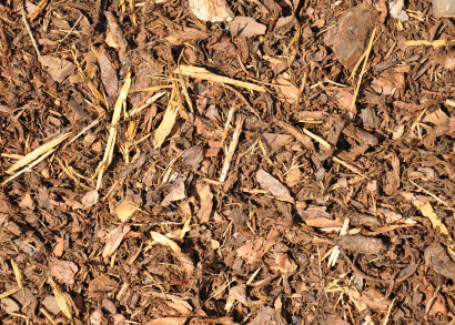 compost-mulch.jpg