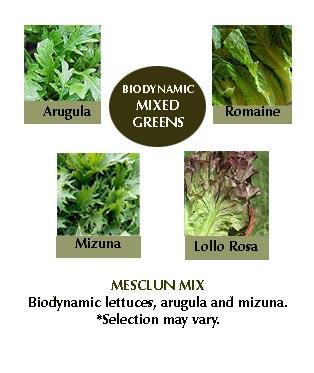dte-mixedgreens.jpg