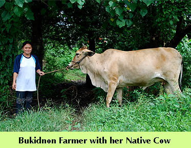 dte-nativecowfarmer.jpg