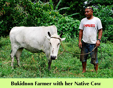 dte-nativecowfarmer2.jpg