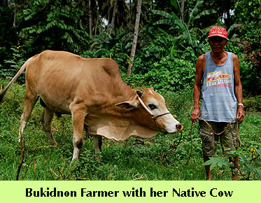 dte-nativecowfarmer4.jpg