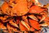 Boiled Blue Crabs - Medium (priced by dozen)