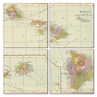 Hawaii Map Coaster Set of 4