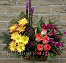 Small size sympathy arrangement with mixed flowers $35