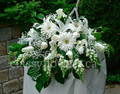 Medium size white sympathy flower arrangement $75