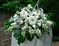 Medium size white sympathy flower arrangement $75