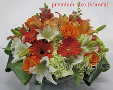 Premium size arrangement