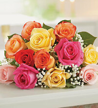 0ne dozen color roses