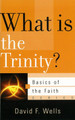 What is the Trinity? - Basics of the Faith Series (Wells)