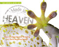 Made in Heaven: Man's Indisciminate Stealing of God's Amazing Design