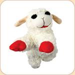 Lambchop