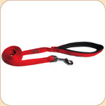 Cushioned-Grip Nylon Web Leash in Red