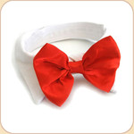 Bow Tie Collar in Red