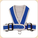 Precision Sport Harness in Nylon--Blue