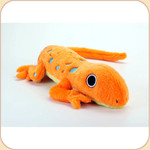 One Big Orange Salamander
