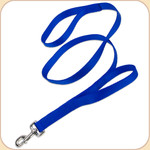 Double Handle Nylon Dog Leash--Blue