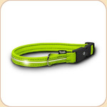 LED Illuminated Collar in Neon Green