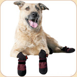 Woof Wear Booties in Burgundy x4--Fleece Lining