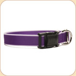 Eco-Friendly Collar--purple & lavender