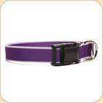 Eco-Friendly Collar--purple & lavender