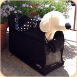 Black Canvas Pet Sak--Polka Dot Ribbon Handles