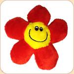 Catnip Flower Blossom