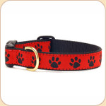 Black Paws on Red Collar