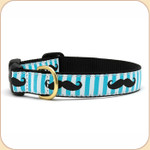 Black Moustache on Blue Striped Collar