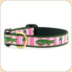 Green Gators Collar