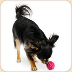 Orbee Tuff Raspberry