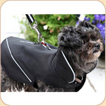 All Weather Coat with Removable Liner & Harness Zipper Opening