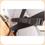 Harness Attachment for Car Booster Seat