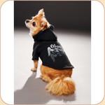 GOOD DOG Charity Hoodie